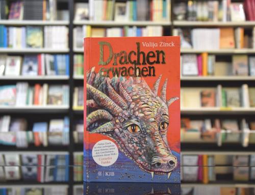 Valija Zinck: Drachenerwachen