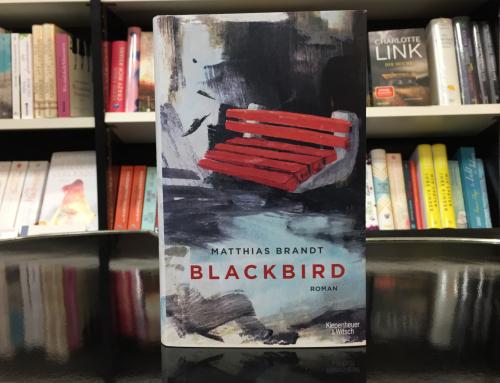 Matthias Brandt: Blackbird